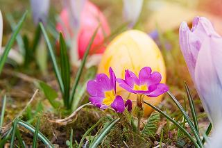 easter-events-lancashire-2015