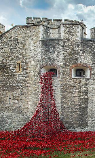 Weeping-Window-Poppies-Sculpture
